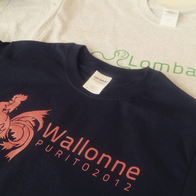 camisetas personalizables